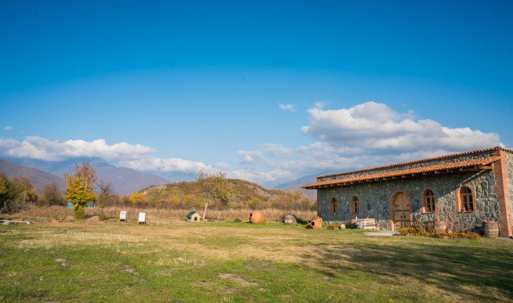 Chubini Family Wines | Vineyards in Georgia